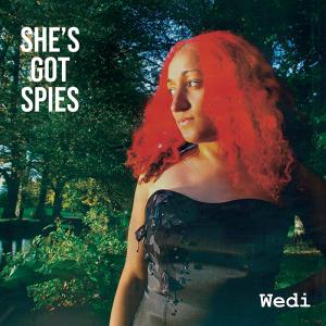 Wedi (album)